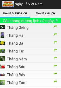 Ngày Lễ Việt Nam poster