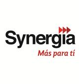 SYNERGIA icon
