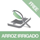 Diagnoses - Arroz Irr. - Free icon