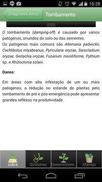 Diagnoses - Arroz Irr. - Free apk screenshot
