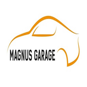 DetailKing Magnus Garage icon