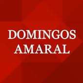 Domingos Amaral icon