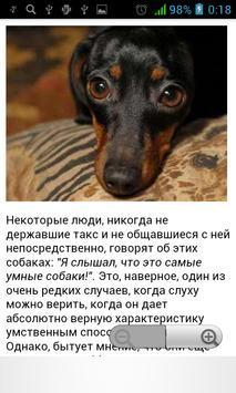 Такса - уход за собакой apk screenshot