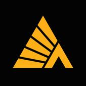 Деловые Линии icon