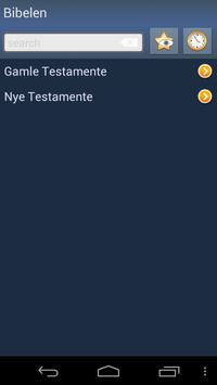 Danish Holy Bible poster