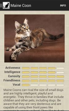 Cat Breeds apk screenshot