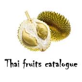 Thailand fruits catalogue icon