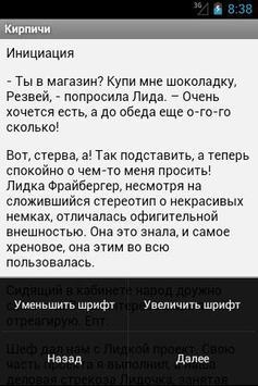 Кирпичи apk screenshot