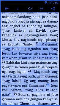 Cebuano Holy Bible   FREE poster