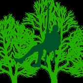 Bonner Baumdienst icon
