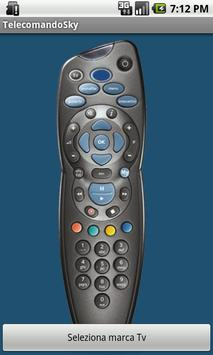 Codici Tv - telecomando Sky poster