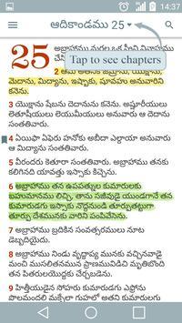 Telugu Holy Bible poster
