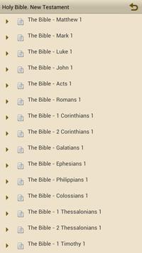 Jerusalem Bible. New Testament poster
