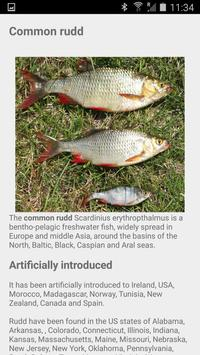 Fishes of Ukraine Lite apk screenshot