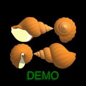 3D Virtual SeaShell Demo icon