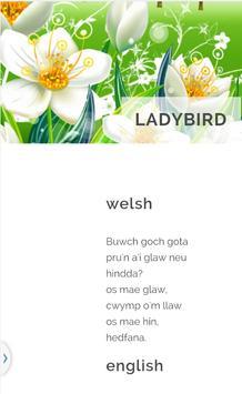 Learn Welsh apk screenshot