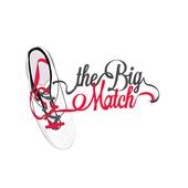The Big Match 2016 icon
