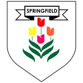 Springfield School Jersey icon