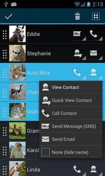 SB Contact Widget Free apk screenshot