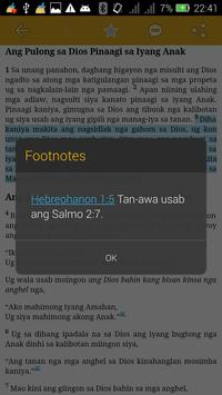 Cebuano Bible + Commentary poster