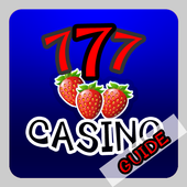 Guide Of Big Fish Casino icon
