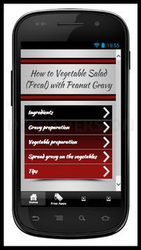 Vegetable Salad n Peanut Gravy poster