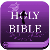 Simplified Children's Bible icon