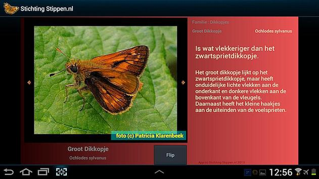 Vlinders in de tuin apk screenshot