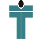 Tesla Audit icon