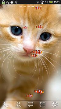KITTY & FISH LIVE WALLPAPER(1) apk screenshot