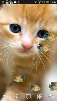 KITTY & FISH LIVE WALLPAPER(8) apk screenshot