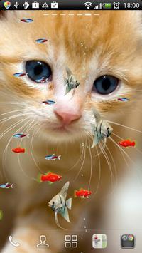 KITTY & FISH LIVE WALLPAPER#11 apk screenshot