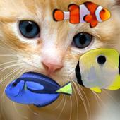 KITTY & FISH LIVE WALLPAPER(4) icon