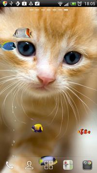 KITTY & FISH LIVE WALLPAPER(4) poster