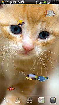 KITTY & FISH LIVE WALLPAPER(4) apk screenshot