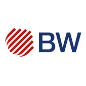 Beneficios Besser Weiss icon