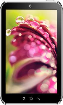 Flowers Wallpaper HD screenshot 15