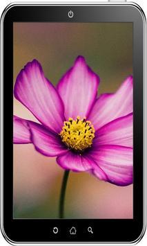 Flowers Wallpaper HD screenshot 3
