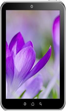 Flowers Wallpaper HD screenshot 4