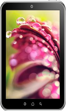 Flowers Wallpaper HD screenshot 7