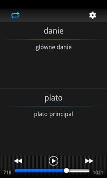 Speeq Polish   Spanish free apk screenshot