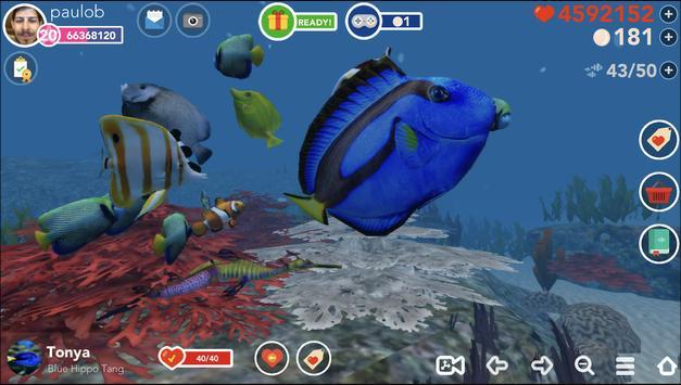 Ocean Reef Life पोस्टर