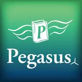 Peg Renew icon