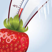 40 Below Fruity Official App icon