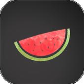 VPN Melon ícone