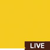 킹콩티비 - 라이브 icon