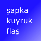 Eng Turkish Flash Cards icon