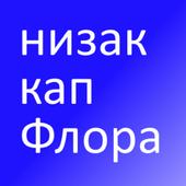 Eng Serbian Flash Cards icon