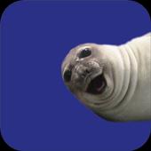 Selfie Seal Light icon