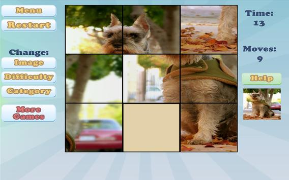 Sliding Puzzles poster